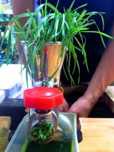Weizengras wird von Hand in einer Saftpresse gepresst