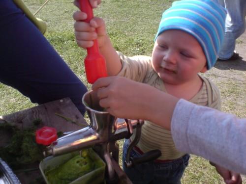 Weizengrassaft Verkostung 001