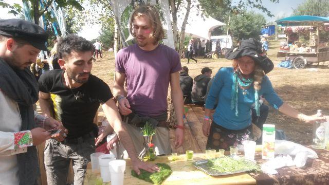 frisch gepresster Weizengrassaft auf dem Garbicz Festival