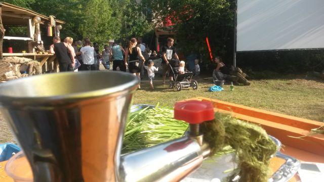 Katapultfestival 2014 und frisch gepresster Weizengrassaft