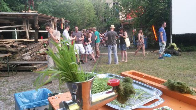 liQwheat Weizengrassaft Katapultfestival 2014