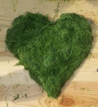 Wir lieben Gras