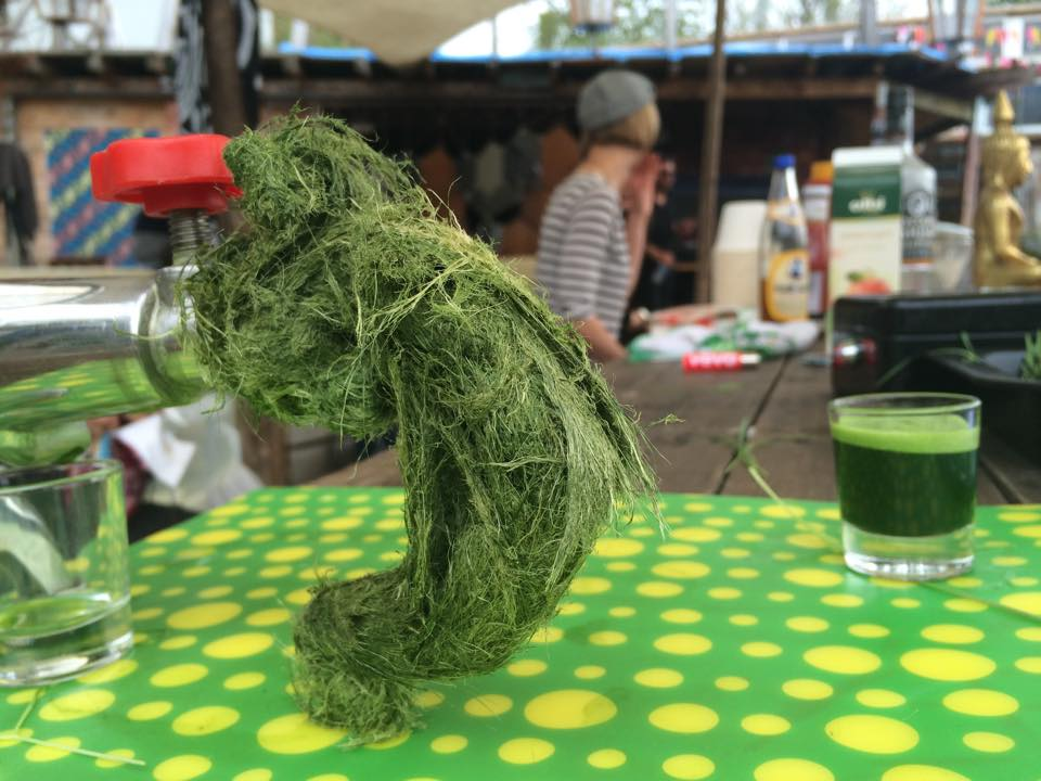 Weizengrassaft macht gute Laune 2