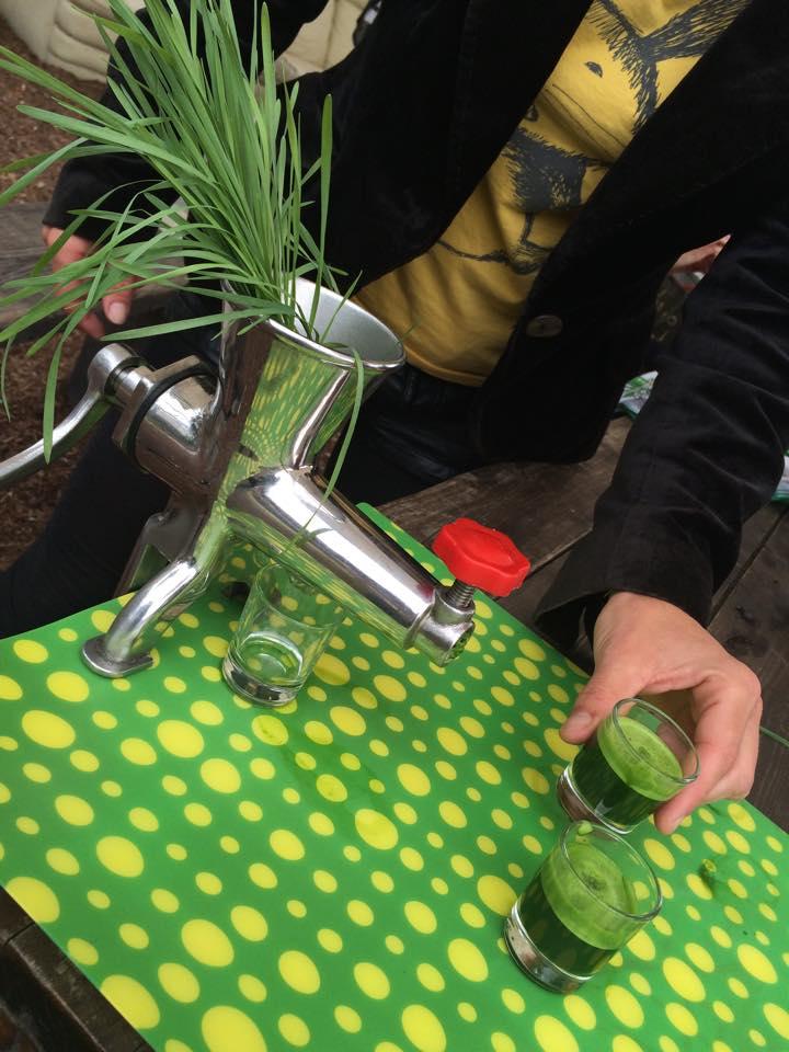 Weizengrassaft macht gute Laune 5